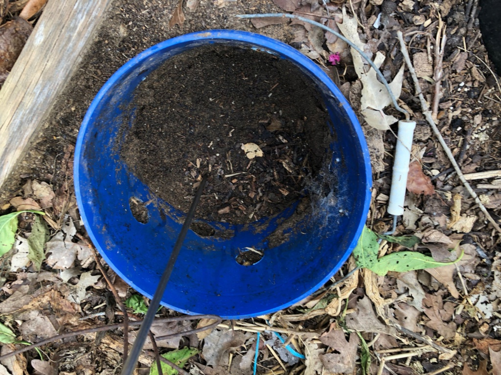 The SFG Journey:Vermicompost Garden Bucket(VGB): How fast do worms eat in a VGB experiment  - Page 2 Img_0033