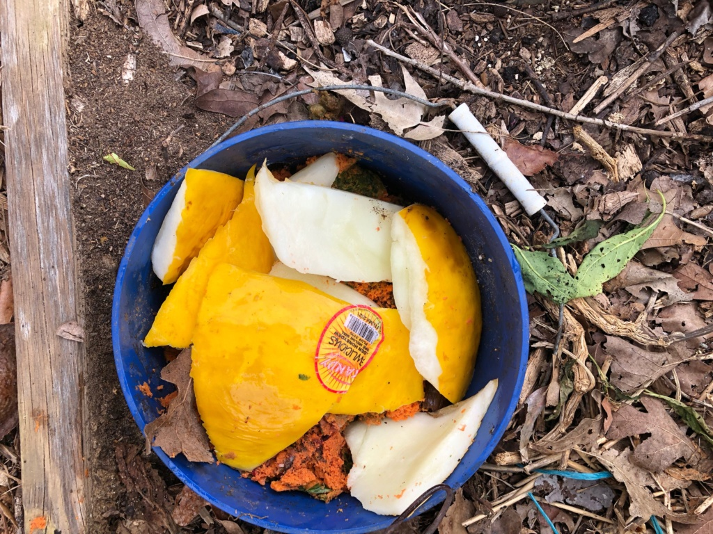 The SFG Journey:Vermicompost Garden Bucket(VGB): How fast do worms eat in a VGB experiment  - Page 2 Img_0036