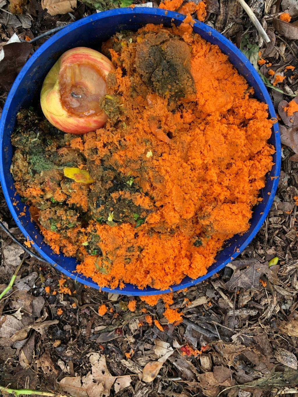 The SFG Journey:Vermicompost Garden Bucket(VGB): How fast do worms eat in a VGB experiment  - Page 2 Img_0040
