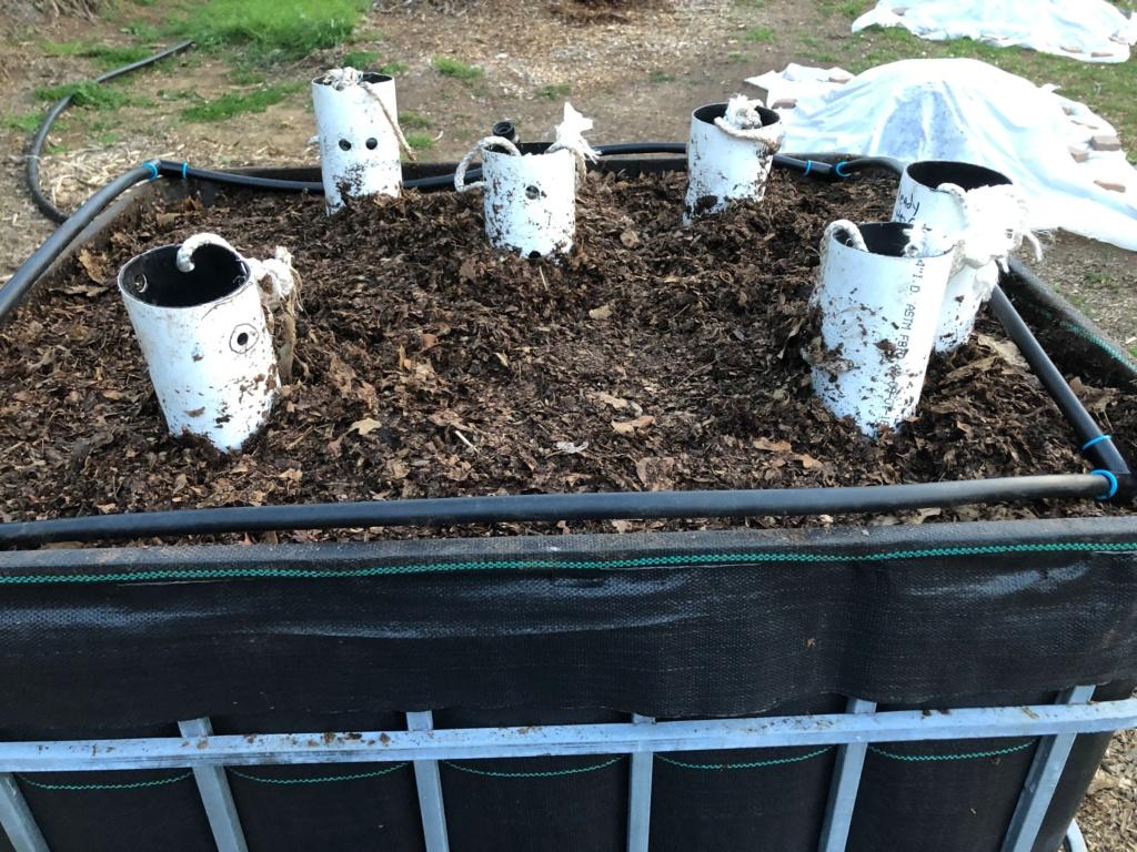The SFG Journey-Johnson Su Bioreactor for composting, No turning Img_0417