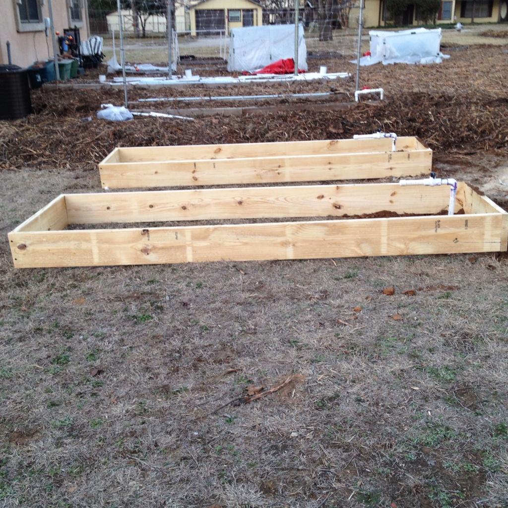 Homemade Concrete Raised Beds Img_0815