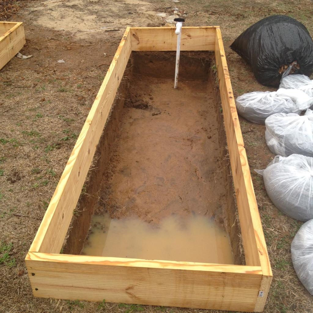 Homemade Concrete Raised Beds Img_0818