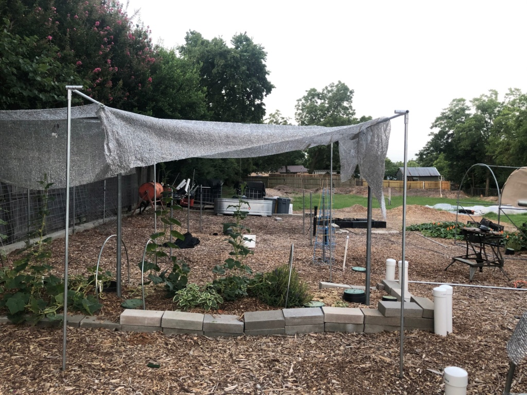 The SFG Journey- preparing Hoops on SFG Beds for future shade cloth Img_1512