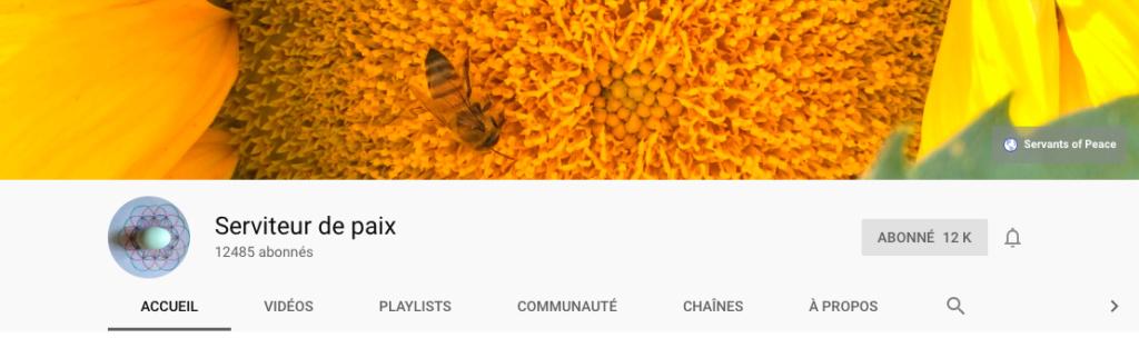 Lanceurs d'alerte ou chercheurs de vérité quelques chaines YouTube Servit10
