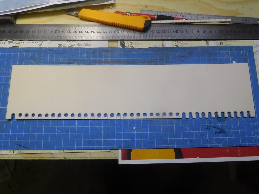 Le reseau de pipa - Page 5 Dscn0920