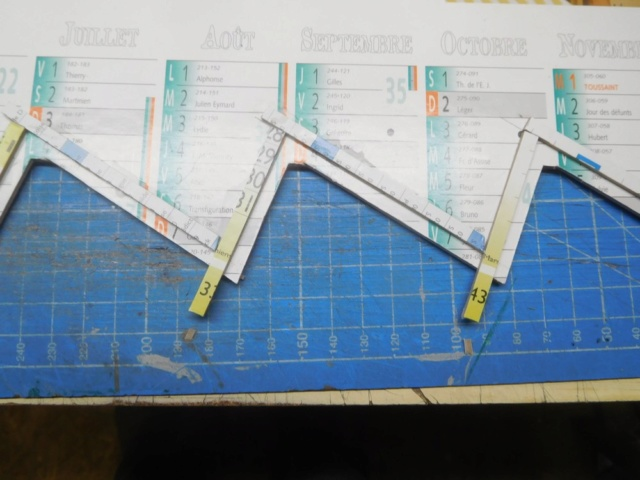 Le reseau de pipa - Page 4 Dscn9637