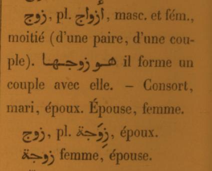 étymologie de زَوْج - Page 5 Zawj10