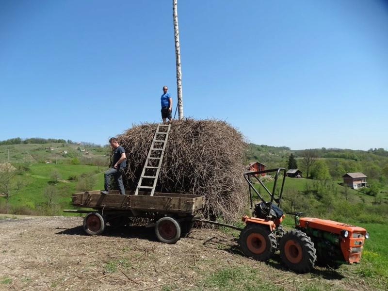 IMT 533/539 vs Tomo Vinković traktori 57650810