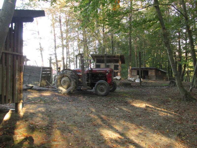 Tema za sve traktore - Page 3 Img_1311