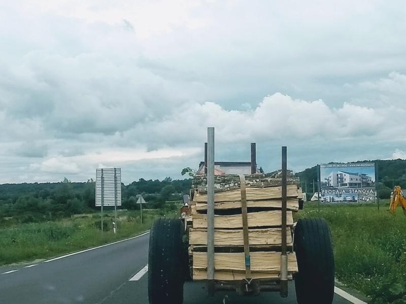 Ručni rad pogonska prikolica za šumarstvo Img_2036