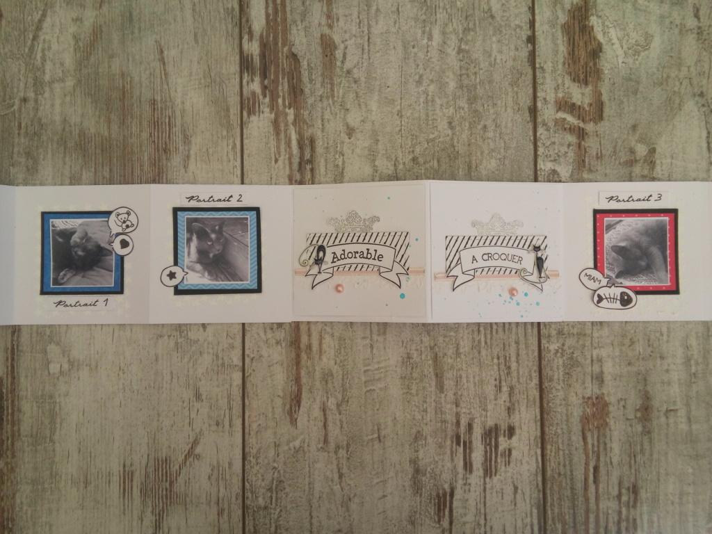 Galerie sujet mini album équipe B les 9 MUSES 20180920
