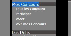 """Concours de décembre 2018 """"EFFET DE CADRE"""" - Page 5 Voter10"""