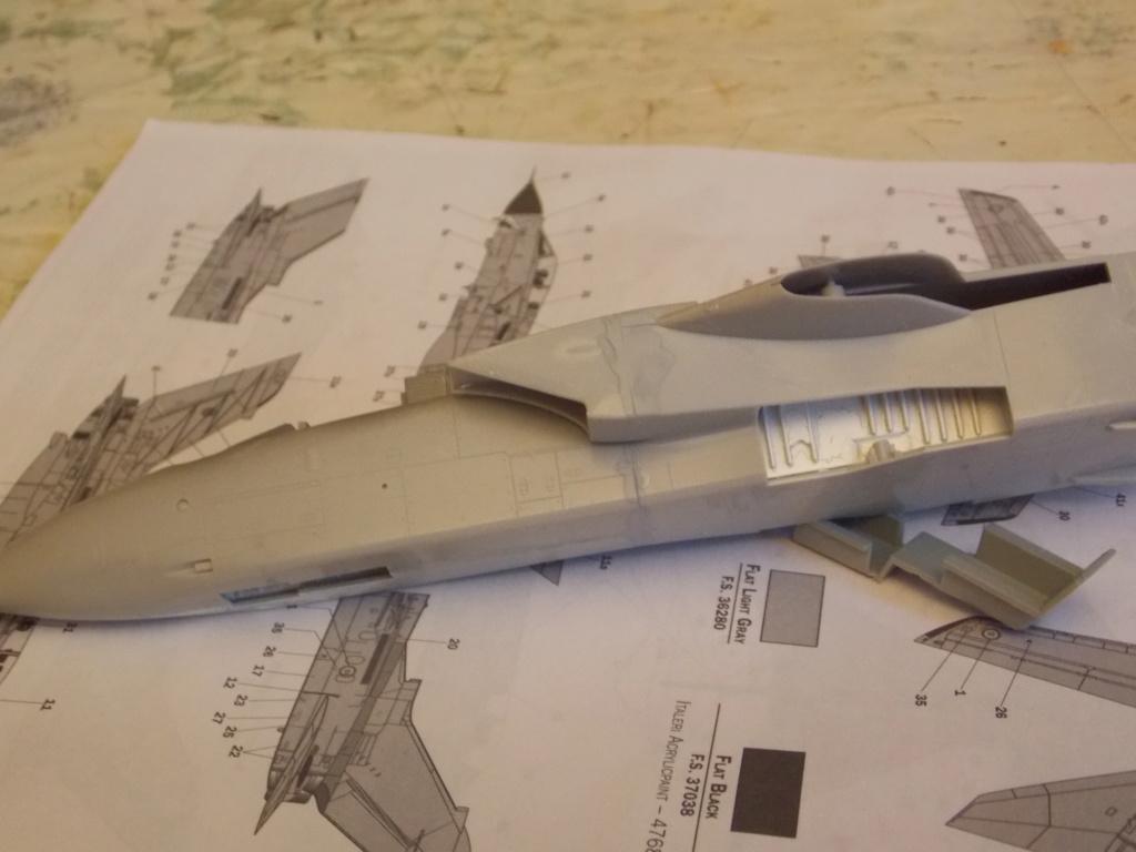 Montage Tornado GR4 Hasegawa - Page 2 Dscn0026