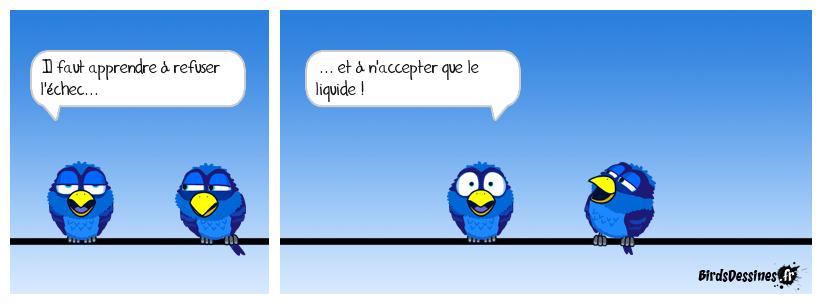 Image du jour  - Page 24 Mahoi_10