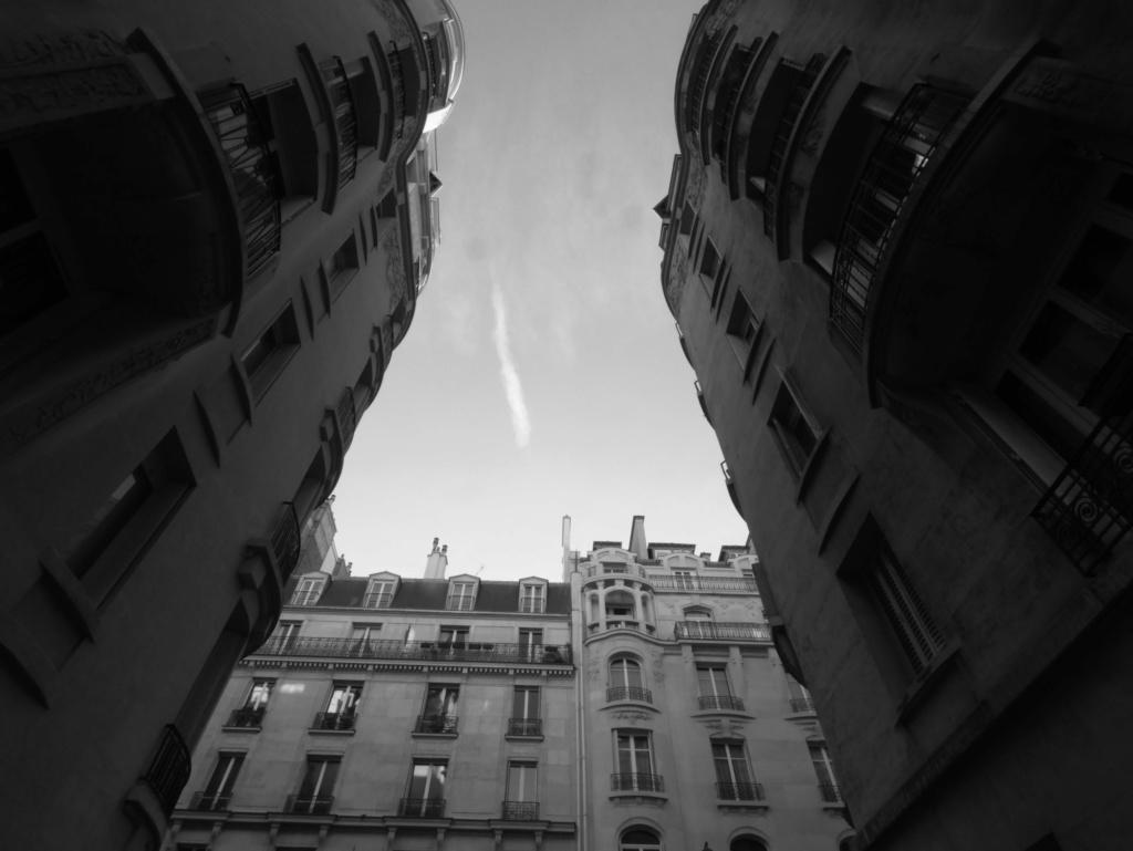 Paris _1020011