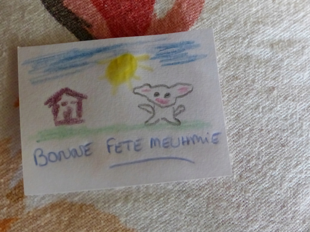 Mes familles sylvanian - Page 7 01410