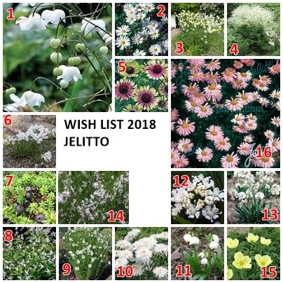 Wish List Jelitto ( on jase là...)  Page10