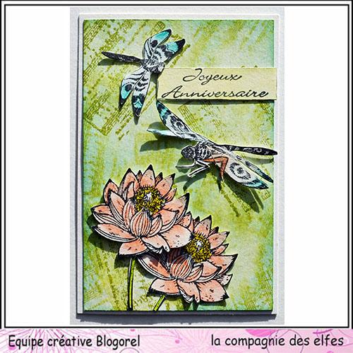 Cartes libellule 3/3 Blogo406