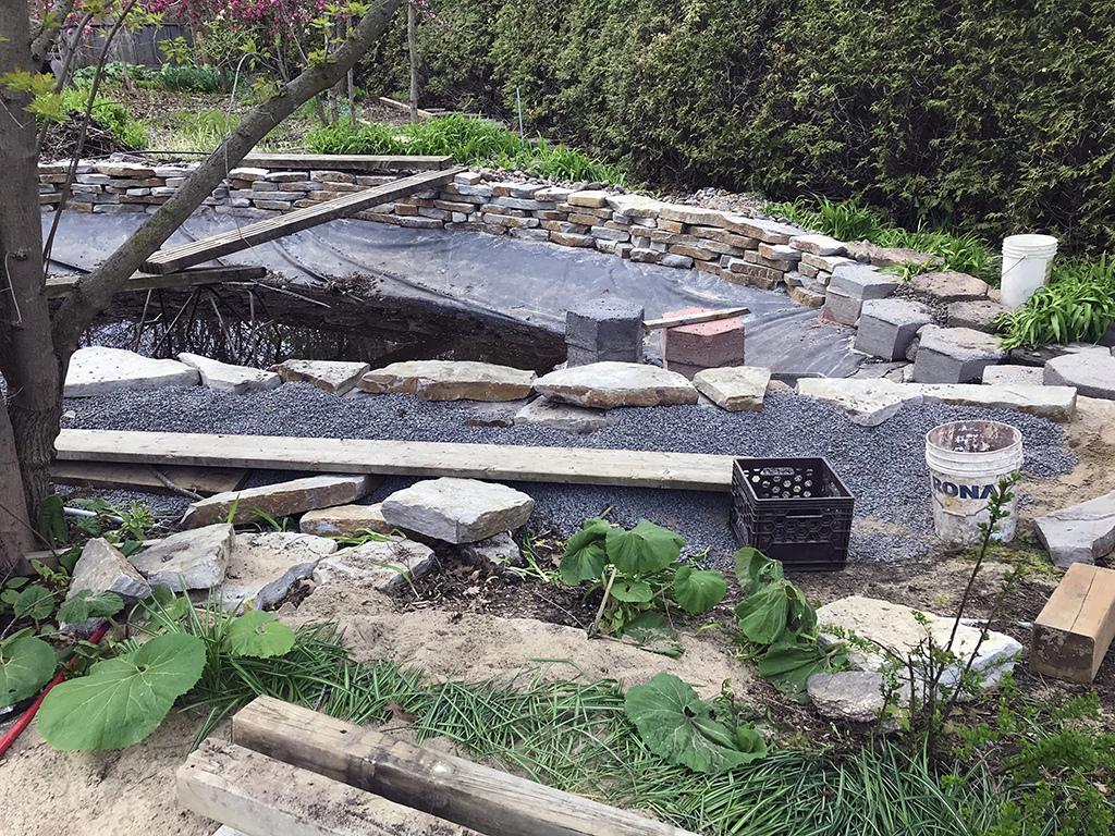 Les bassins de 1992....à refaire - Page 9 Img_2853