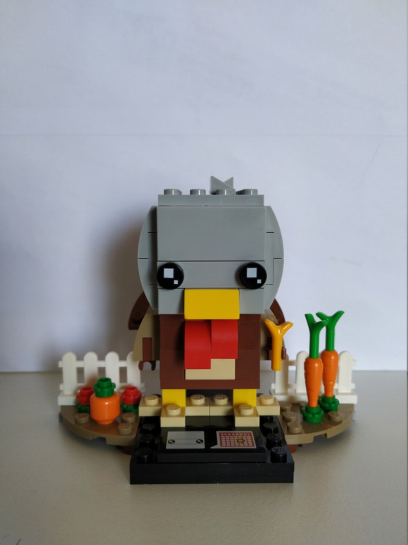 ΤhebrickReview 40273: Thanksgiving Turkey Img_2017