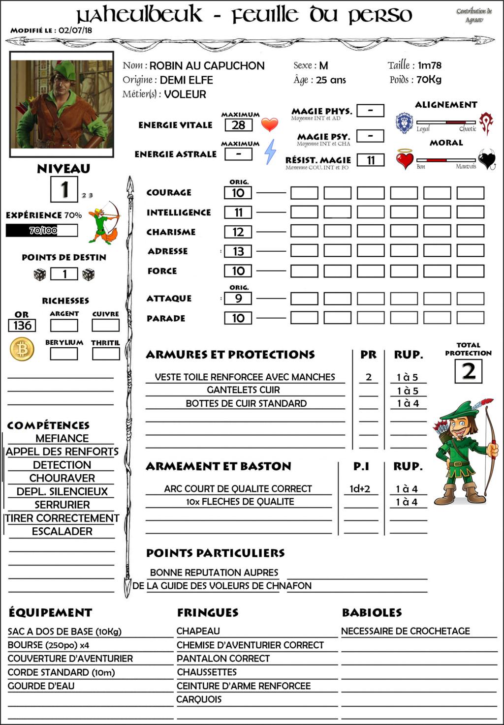 Robin, Demi-Elfe Voleur Fiche11