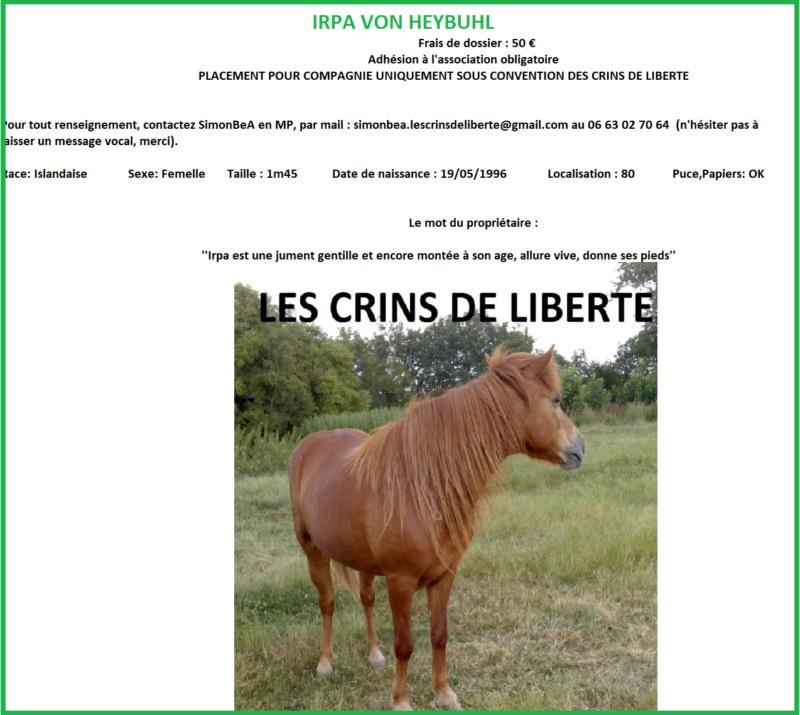 Dept 80 - IRPA VON HEYBUHL & UNE CLEOPATRE  - poneys - sauvées par Mickael  Fiche_16