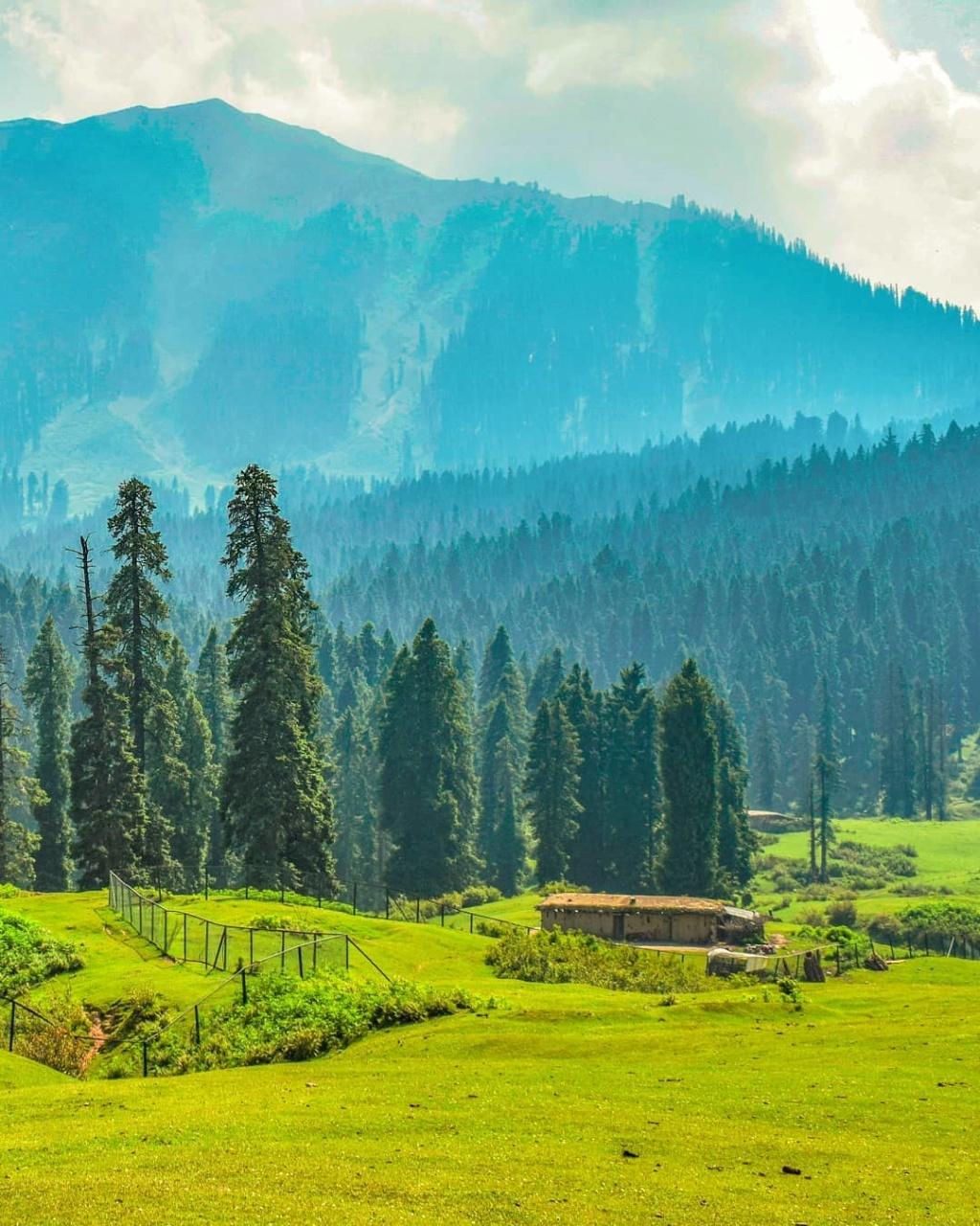 কাশ্মীর ভ্রমন Kashmir Tour  15-04-10