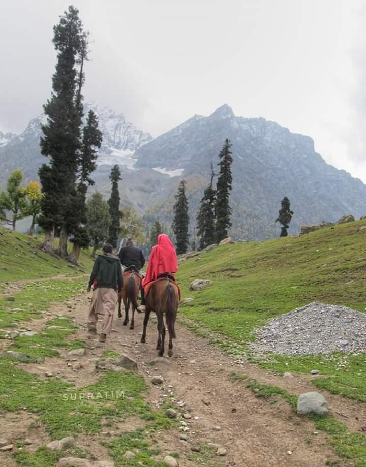 কাশ্মীর ভ্রমন Kashmir Tour  Fb_im106