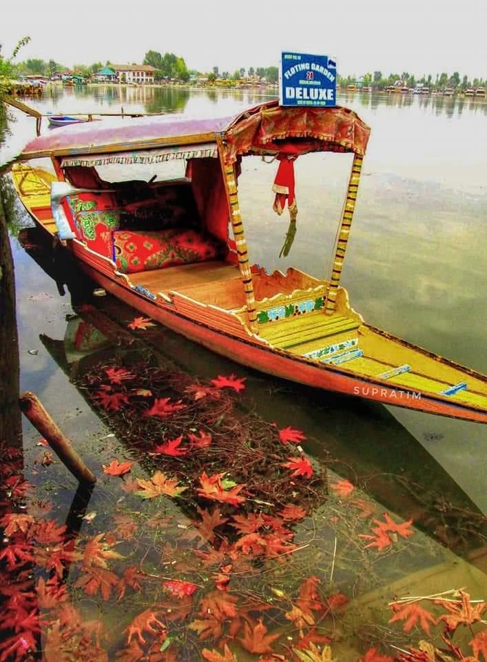 কাশ্মীর ভ্রমন Kashmir Tour  Fb_im110