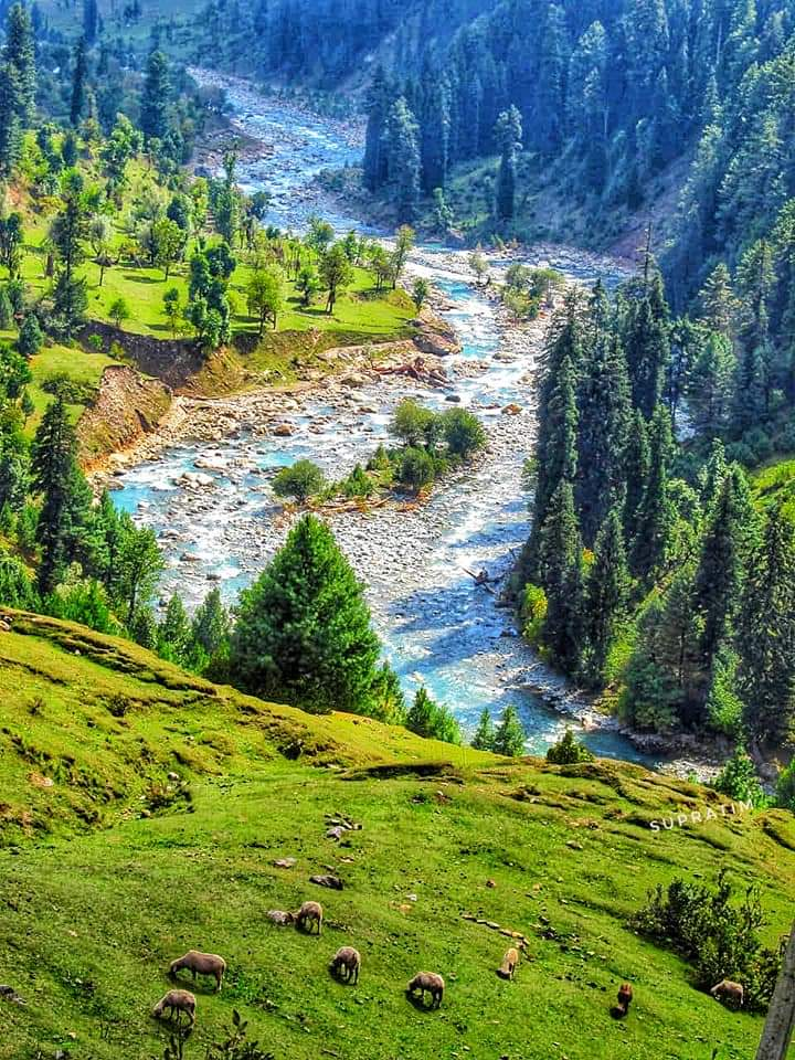 কাশ্মীর ভ্রমন Kashmir Tour  Fb_im114