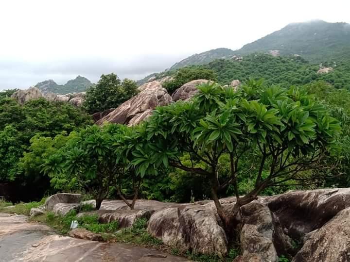 পঞ্চলিঙ্গেস্বর   Panchalingeswar Fb_img83
