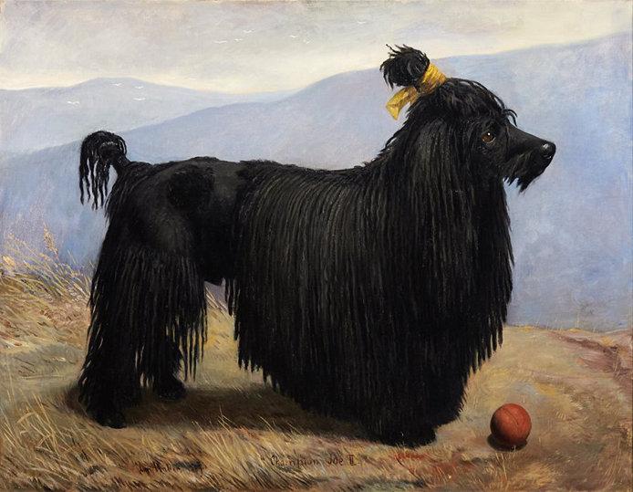 Historical Paintings of Poodles 1889_p11