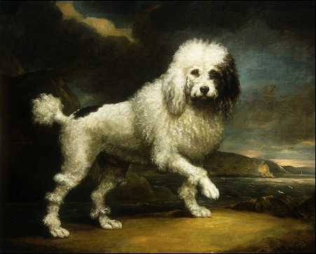 Historical Paintings of Poodles Poodle14