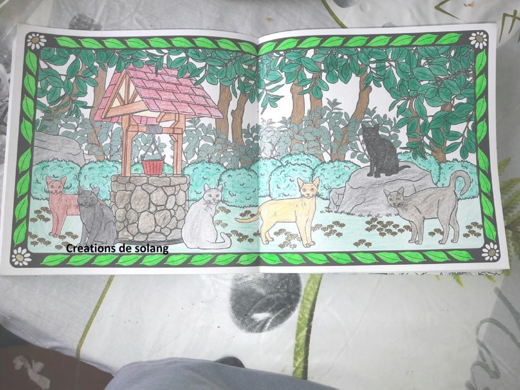 Mes coloriages (et dessins) - Page 3 52300312