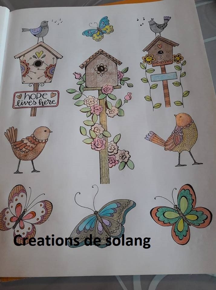 Mes coloriages (et dessins) - Page 3 53194112