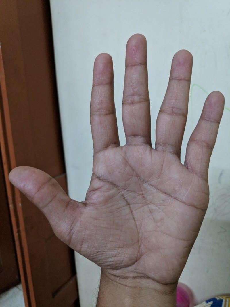 About my palm 20190413