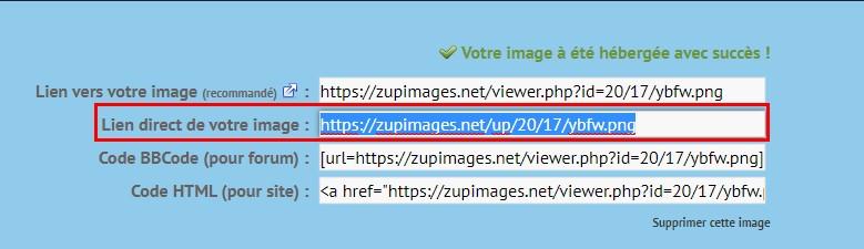 Comment héberger une image ou vidéo Lien_d10