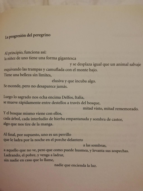 POESIA - Página 4 Img_2011