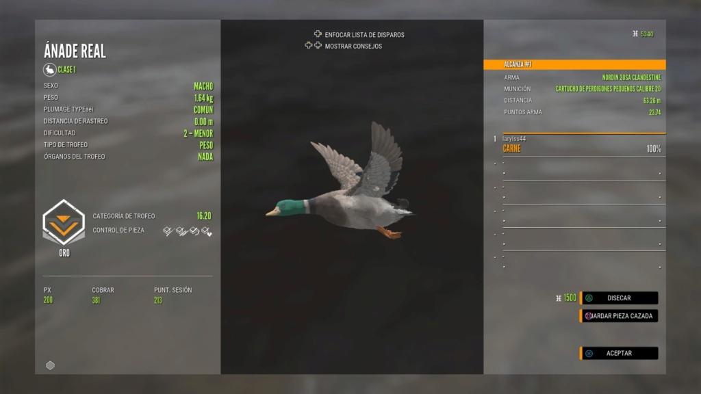 Patos en layton Rnfetc14
