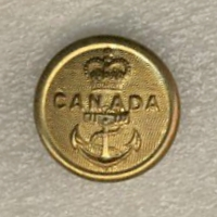 WTB 4 RCN ratings 24mm buttons Button10