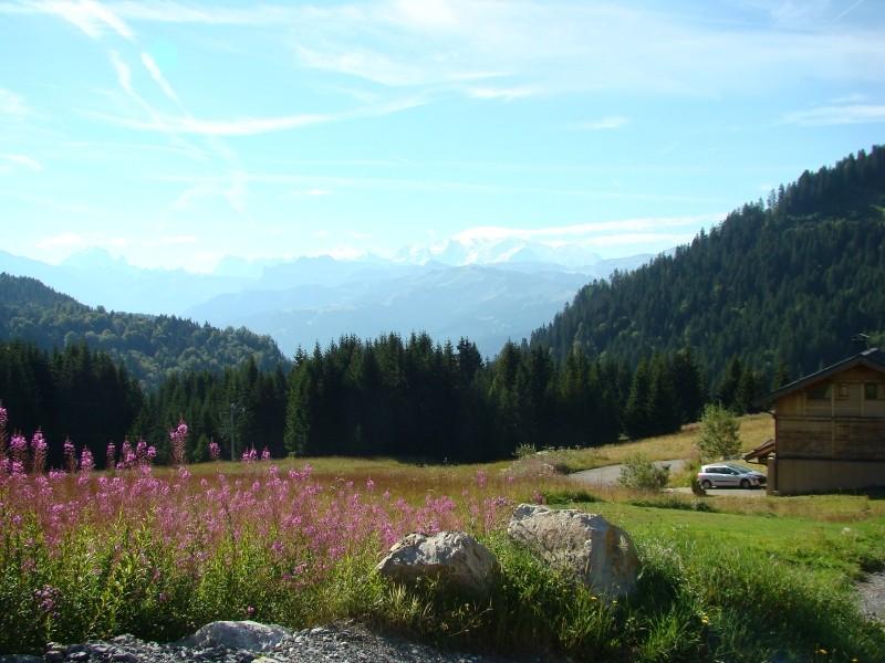 Puka et Chadka dans les Alpes 02_pra10
