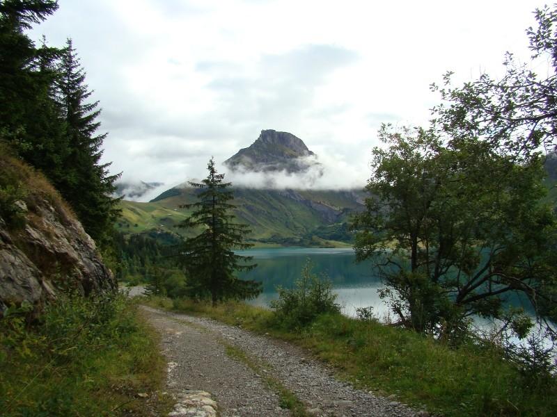 Puka et Chadka dans les Alpes 10_bar10