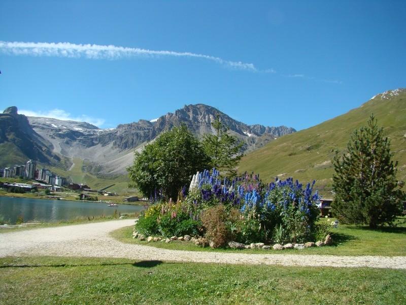 Puka et Chadka dans les Alpes 21_tig10