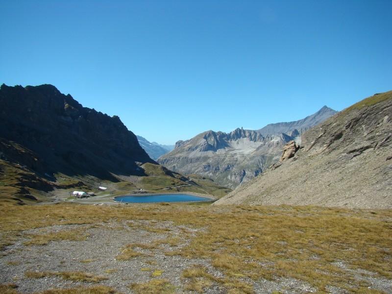 Puka et Chadka dans les Alpes 24_col10