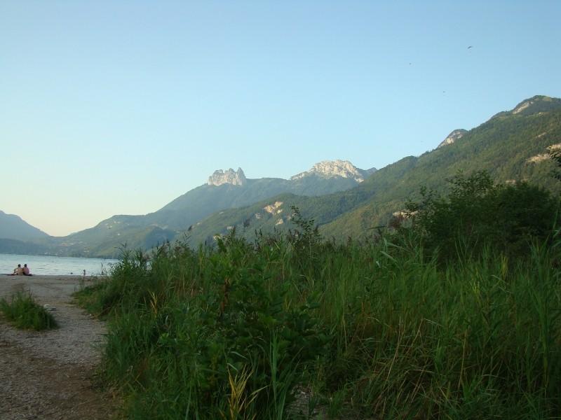 Puka et Chadka dans les Alpes 31_cam10