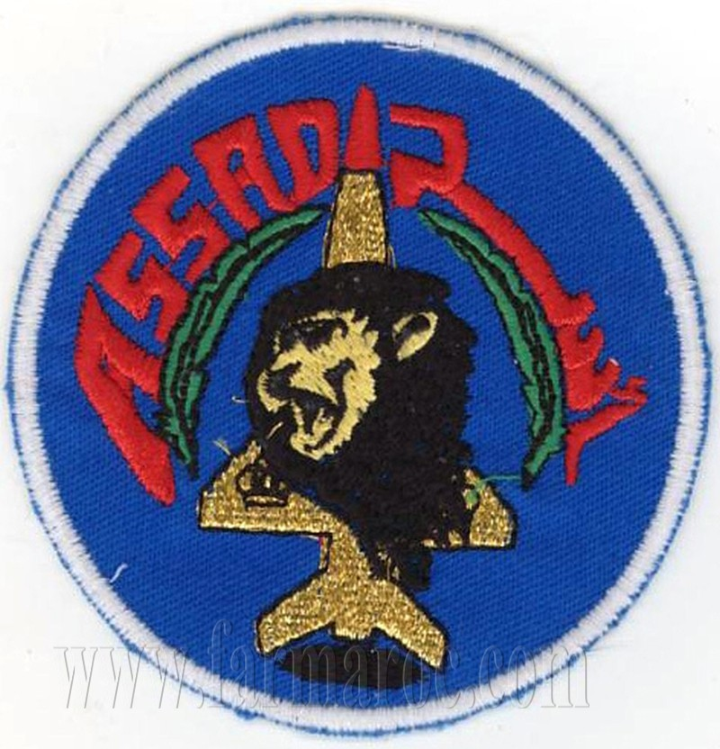 RMAF insignia Swirls Patches / Ecussons,cocardes et Insignes Des FRA - Page 3 Clipbo32