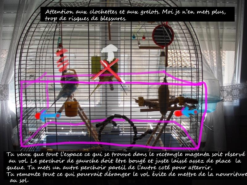 ma cage : avis et conseils Lui10
