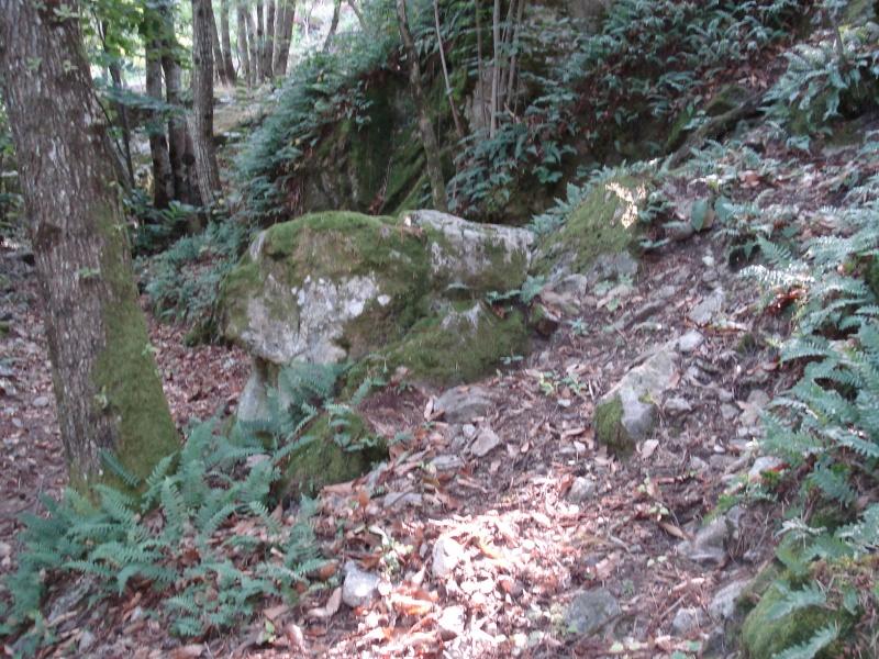 Ardèche Nord Ardach36