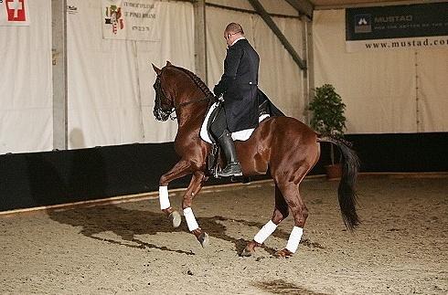 ♣ photos de vous à cheval Captur12