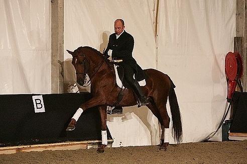 ♣ photos de vous à cheval Captur14